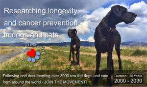 long-living-pets-research-foundation