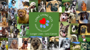 Long Living Pets Research Foundation