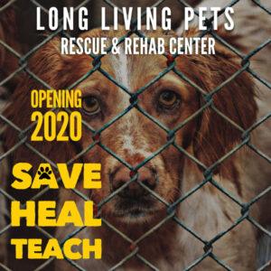 save-heal-teach